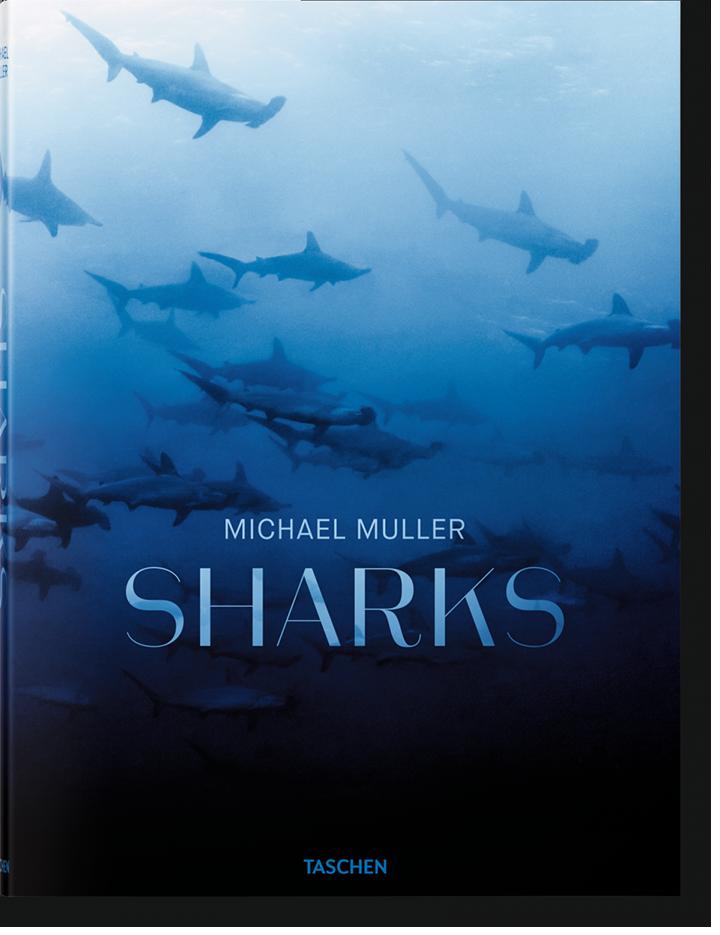 Shark. Michael Muller, portada