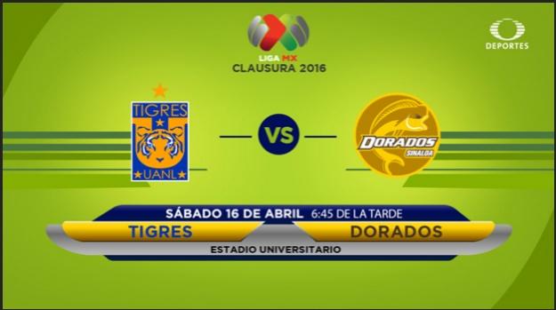 Tigres vs Dorados en vivo